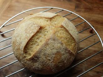 Gluten free sourdough bread recipe